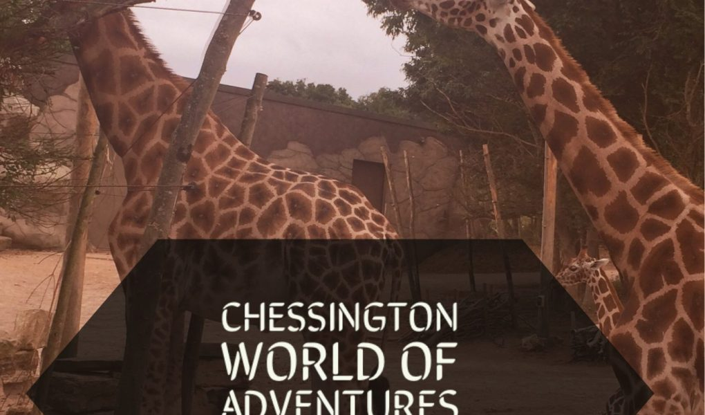 Chessington world of adventures, family travel, days out with kids, family days out, chessington reviews