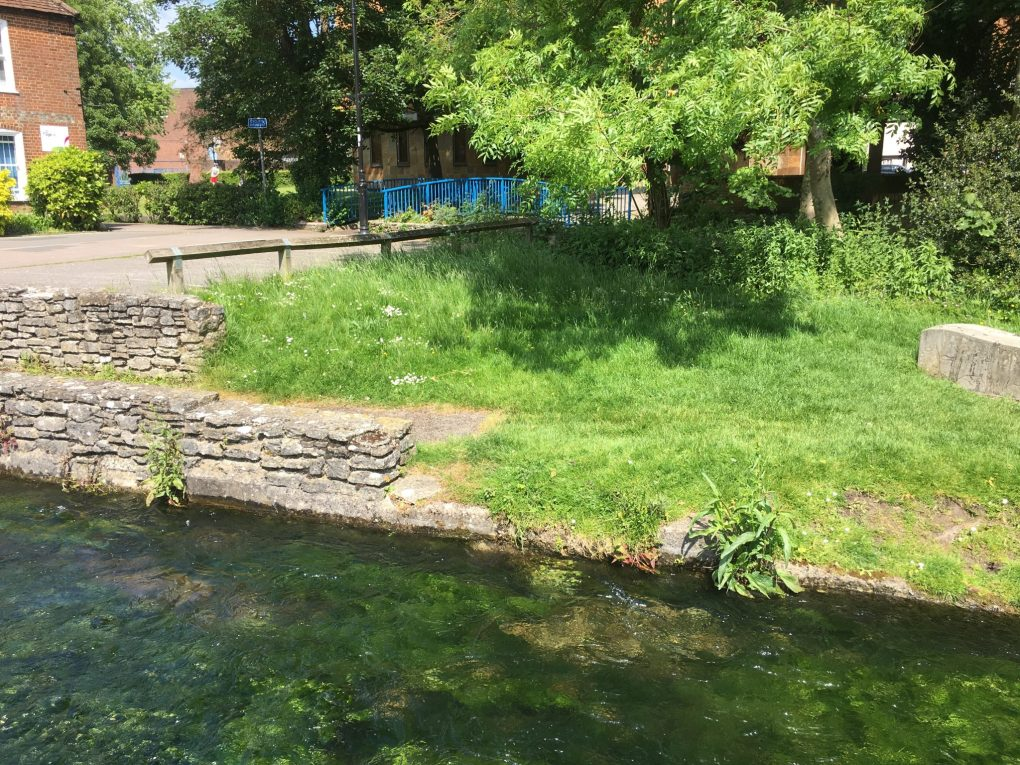 Grass by River in Andover, Town Mills
