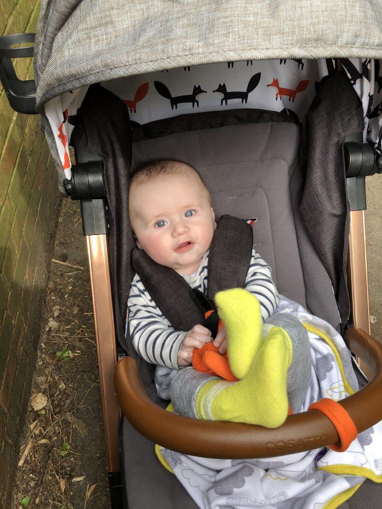 Baby Boy Felix in Pushchair aged seven months