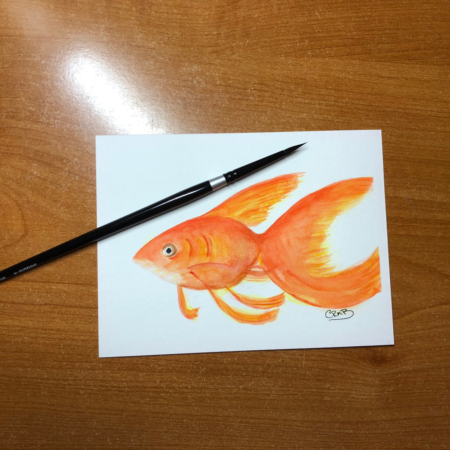 Watercolor – Goldfish