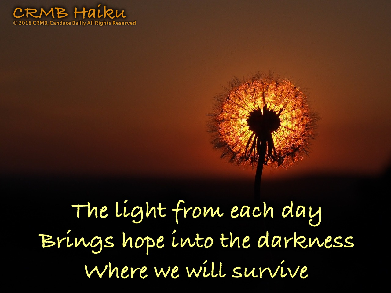 Light – Haiku