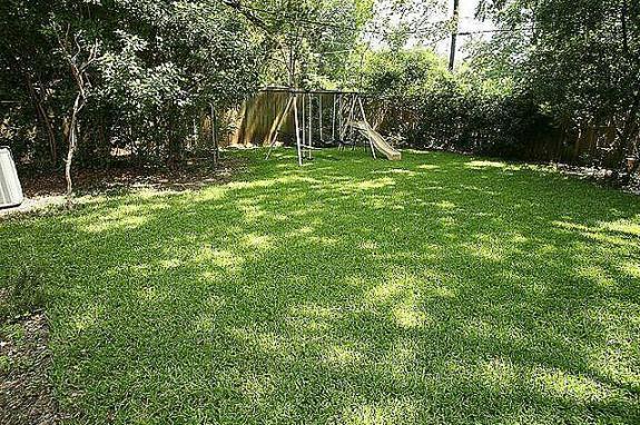Rockhurst Backyard 2