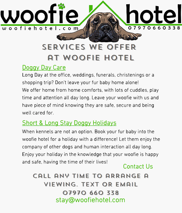 Advert for Woofie Hotel