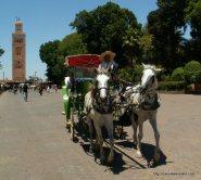 Um passeio de carruagem é uma das formas de conhecer Marrakech