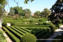 jardim_botanico_ajuda (5)