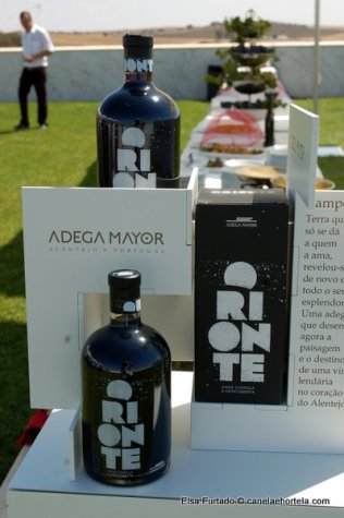adega_mayor2012 (97)
