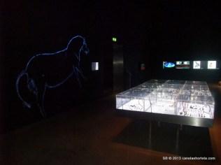 foz_coa_museu_gravuras (2)