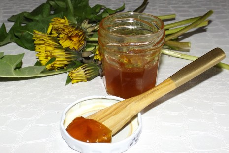 Miel ou gelée de fleurs de pissenlit