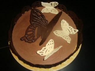 Comment faire des papillons volants en chocolat2