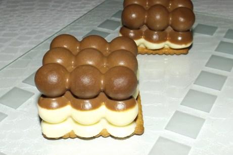 Mini bavarois mousse aux 2 chocolats express