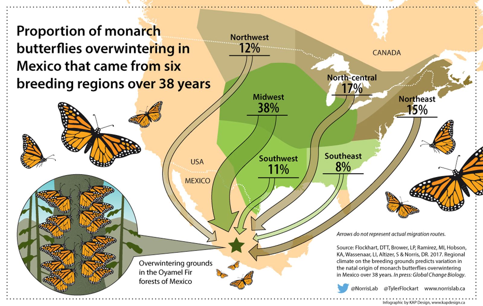 Researchers Pinpoint Monarch Butterfly Birthplaces To Help