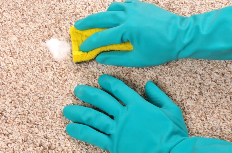 how to get milk vomit smell out of carpet