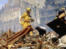 Una foto storica, emblematica: centinaia di 'search dog' furono impiegati dopo l'11 settembre 2001 a New York per trovare superstiti tra le rovine del World Trade Center