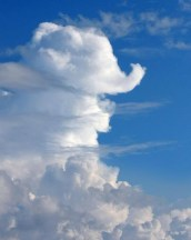 cloud-elephant