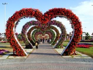 Dubai Miracle Garden (1)