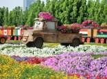 Dubai Miracle Garden (21)
