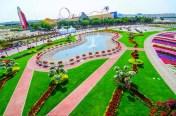 Dubai Miracle Garden (3)