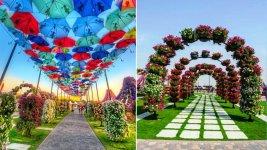 Dubai Miracle Garden (31)