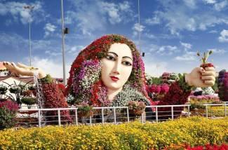Dubai Miracle Garden (41)