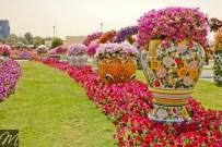 Dubai Miracle Garden (50)