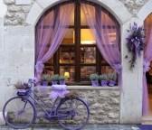 Rengarenk çiçekli kapı giriş tasarımları (14)