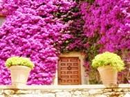 Rengarenk çiçekli kapı giriş tasarımları (20)