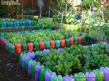 İnanılmaz Bahçe Düzenleme Fikirleri - Kendin yap (13)