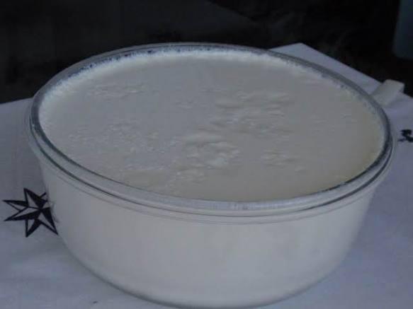 ev-yapimi-yogurt