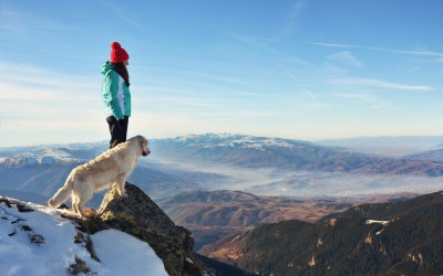 Hiking With Your Dog in the Winter