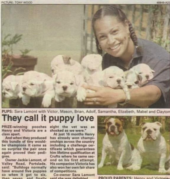 Canine Family Planner Newspaper Clipping for first litter