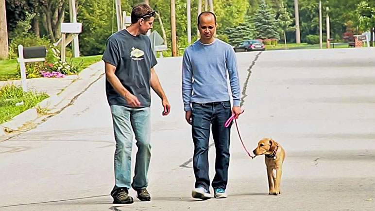 Personal Dog Trainers in Chicago