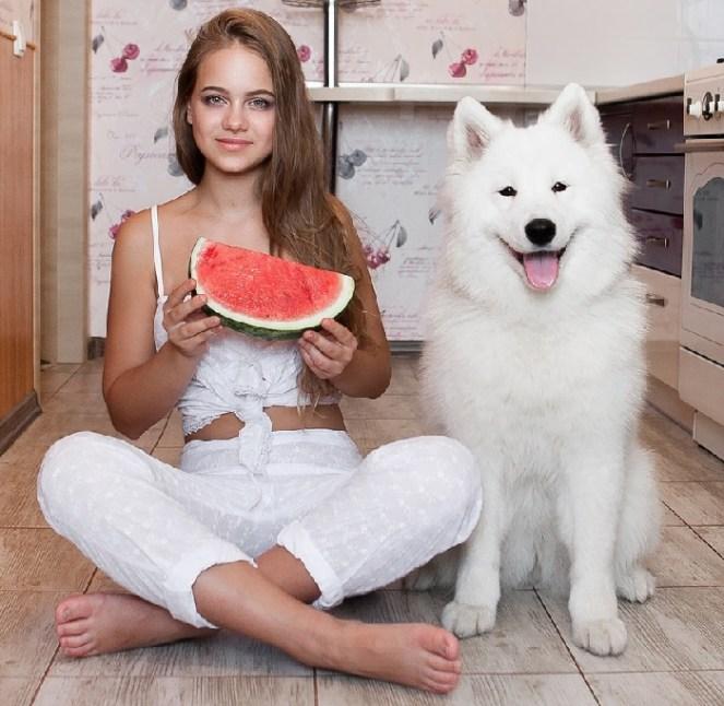 Wantermelon for dog