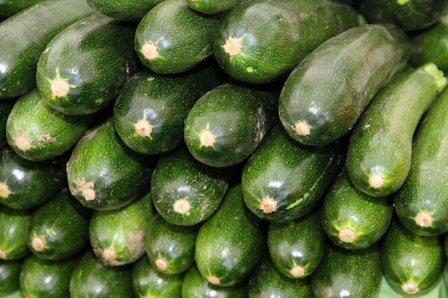 Benefits of Zucchini for Dogs