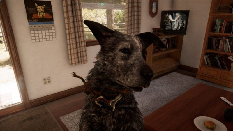 Deaf Game Review – Far Cry 5