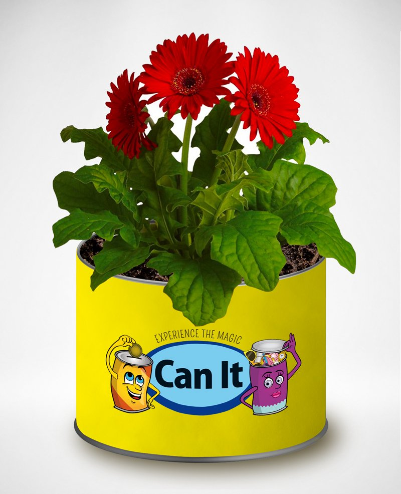 plant can