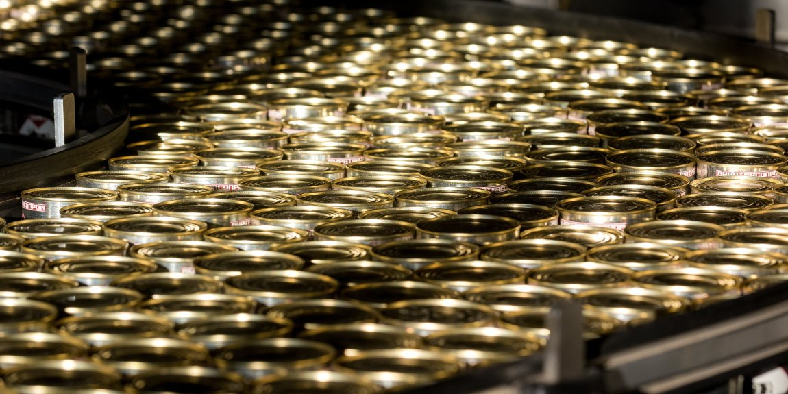 Many golden cans at our factory on a conveyor