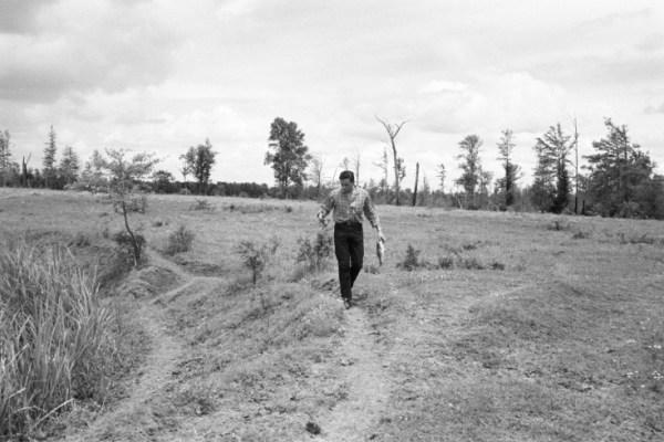 CIBASS Johnny Cash paseando por el campo