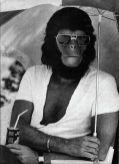 CIBASS El planeta de los simios