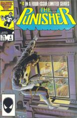 punishercover6