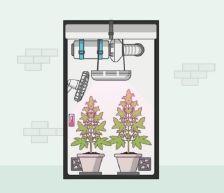 canna wiki.de technisches Equipment - Grow Guide