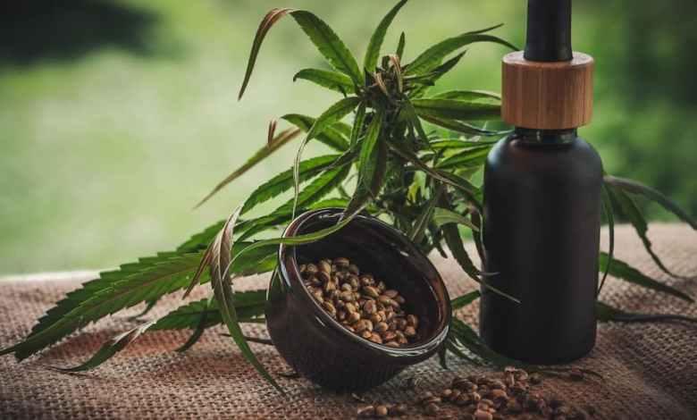 flacon d'huile de cbd, graines de cbd et feuilles de cbd