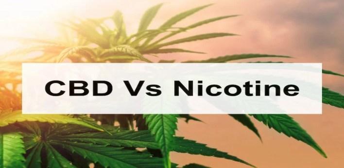 canabis vs nicotine