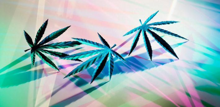 trois feuilles de cannabis colorés
