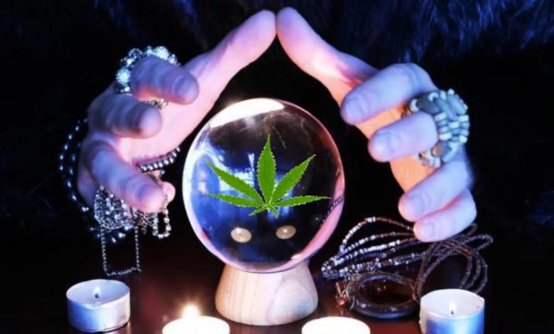 boule de crystal et main de voyante dessus