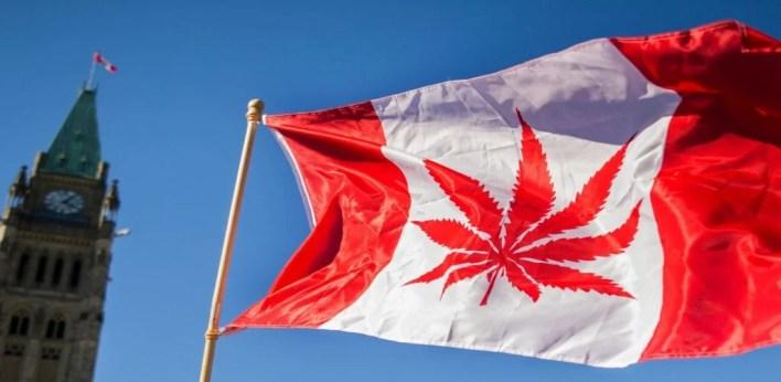 drapeau cannada hissé haut avec feuille de cannabis dessus
