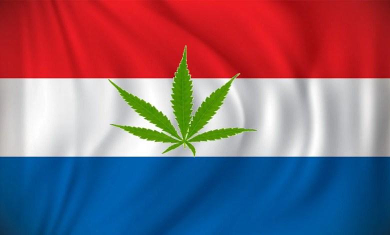 drapeau pays bas cbd