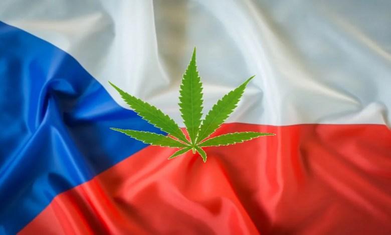drapeau froissé république tchèque et feuille cannabis dessus