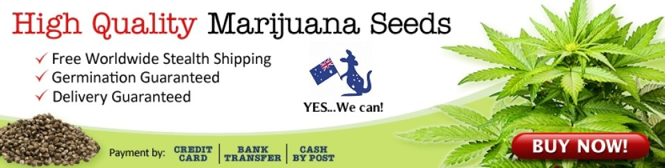 Buy Mixed Cannabis Seeds In Australia