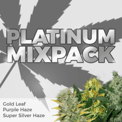 Platinum Seeds Mixpack