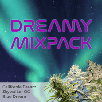 Dreamy Mixpack Cannabis Seeds